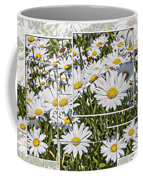Daisy Daisies White Yellow Buttom Scenic Floral Coffee Mug featuring the photograph Daisy Days by Alice Gipson