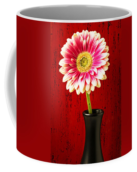 Flower Coffee Mug featuring the photograph Daisy In Black Vase by Garry Gay
