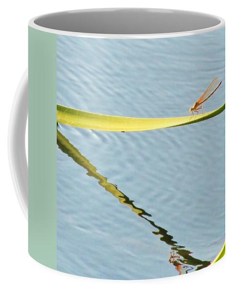 Water Coffee Mug featuring the photograph Damselfly Reflection by Michelle Cassella