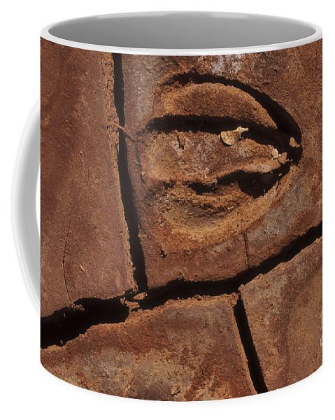Sandra Bronstein Coffee Mug featuring the photograph Deer Imprint In Mud by Sandra Bronstein