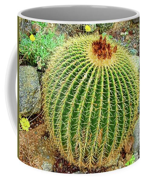 Desert Cactus Coffee Mug featuring the photograph Desert Cactus by Mariola Bitner