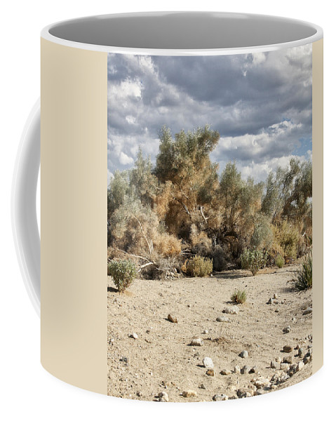 Desert Coffee Mug featuring the photograph Desert Cloud Palm Springs by William Dey