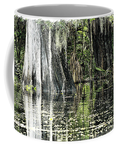 River Coffee Mug featuring the photograph Details Of A Florida River by Janie Johnson