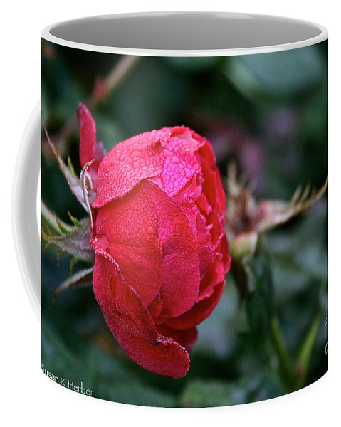 Flower Coffee Mug featuring the photograph Dew Drenched Rose by Susan Herber