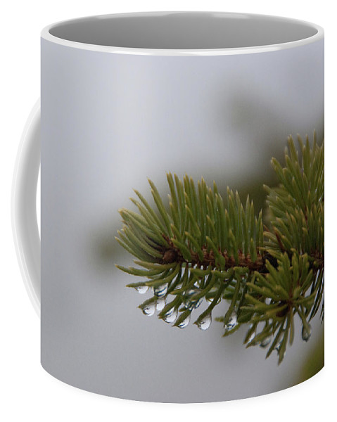 Tree Coffee Mug featuring the photograph Dew by Guy Whiteley