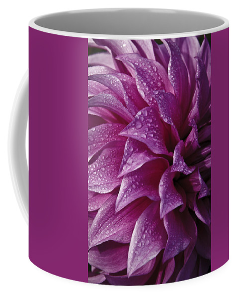 Dewy Dahlia Coffee Mug featuring the photograph Dewy Dahlia by Wes and Dotty Weber