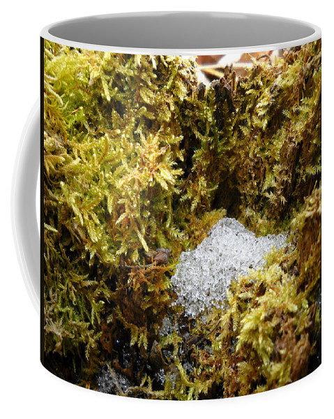 Dragon Nest Coffee Mug featuring the photograph Diamonds In A Dragon Nest by Kent Lorentzen