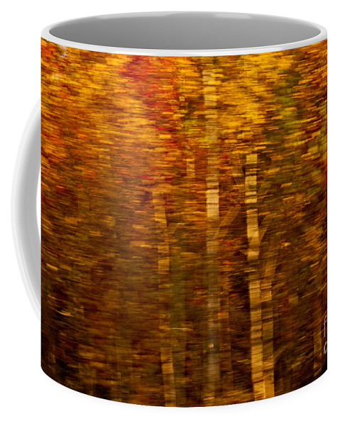 Impressionism Coffee Mug featuring the photograph Did You Say Trees by Aimelle