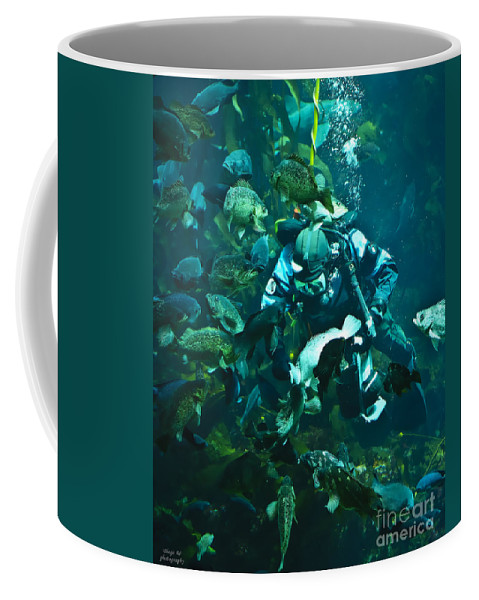 Diver Coffee Mug featuring the photograph Diver Feeding Fish by Diego Re