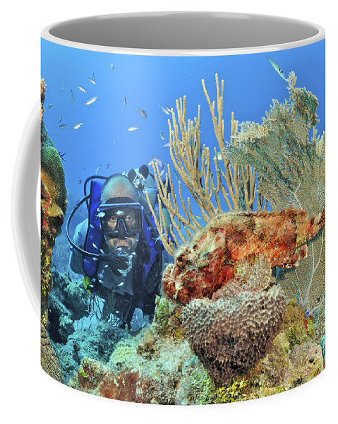 Coral Reef Coffee Mug featuring the photograph Diver Looks At Scorpionfish by Karen Doody