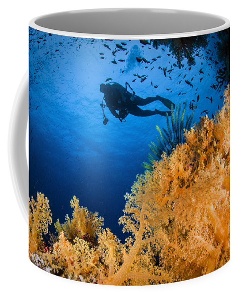 Crinoid Coffee Mug featuring the photograph Diver Swimms Above Soft Coral, Fiji by Todd Winner