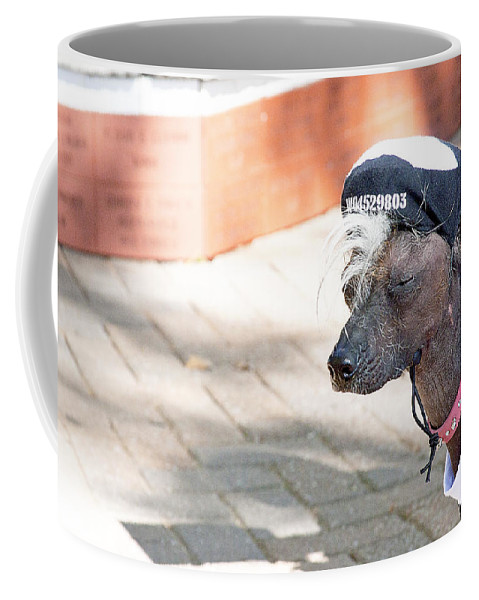 Dog Coffee Mug featuring the photograph Dog On A Bad Luck Day by Toni Hopper