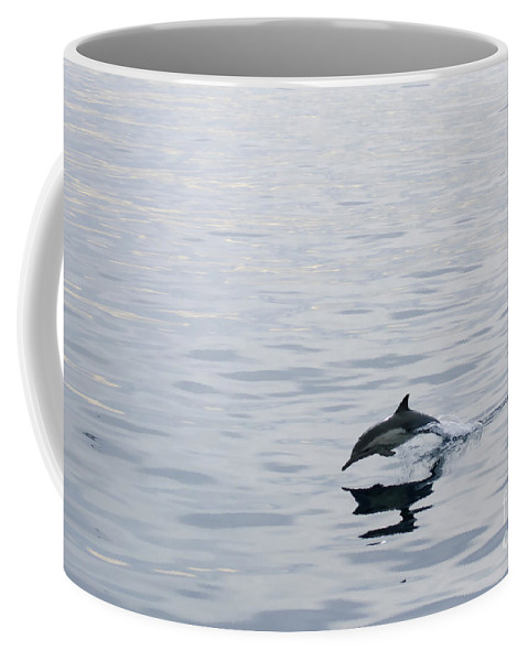 Dolphin Coffee Mug featuring the photograph Dolphin by Diego Re