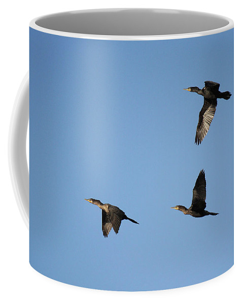 Roena King Coffee Mug featuring the photograph Double-crested Cormorant In Flight by Roena King