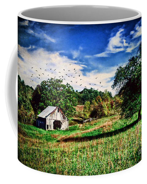 Abandoned Coffee Mug featuring the photograph Down On The Farm by Darren Fisher
