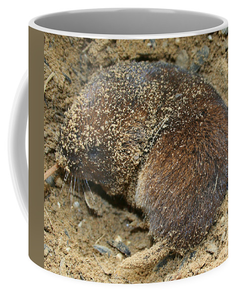 Mole Coffee Mug featuring the photograph Down Right Dirty Mole by Kathy Clark