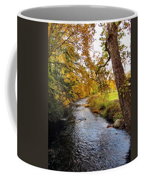 Fall Coffee Mug featuring the photograph Down Stream by Art Dingo