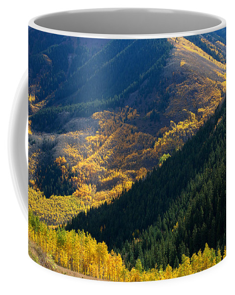 Aspen Bole Canvas Print Coffee Mug featuring the photograph Downhill Flow by Jim Garrison