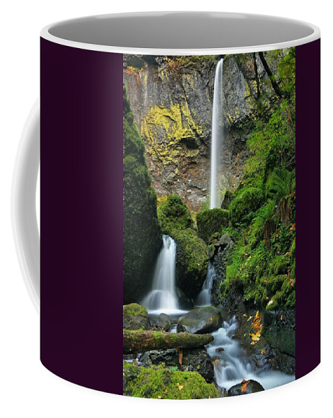Waterfall Coffee Mug featuring the photograph Downstream by Winston Rockwell