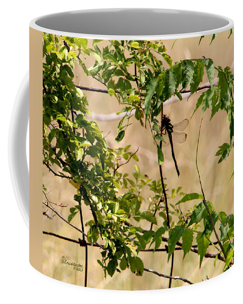 Dragonfly Coffee Mug featuring the photograph Dragonfly Lunch by Ericamaxine Price