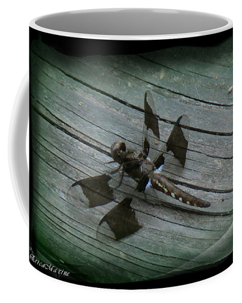 Dragonfly Coffee Mug featuring the photograph Common Whitetail Dragonfly by Ericamaxine Price