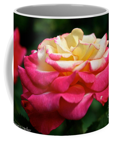 Plant Coffee Mug featuring the photograph Dream Come True by Susan Herber