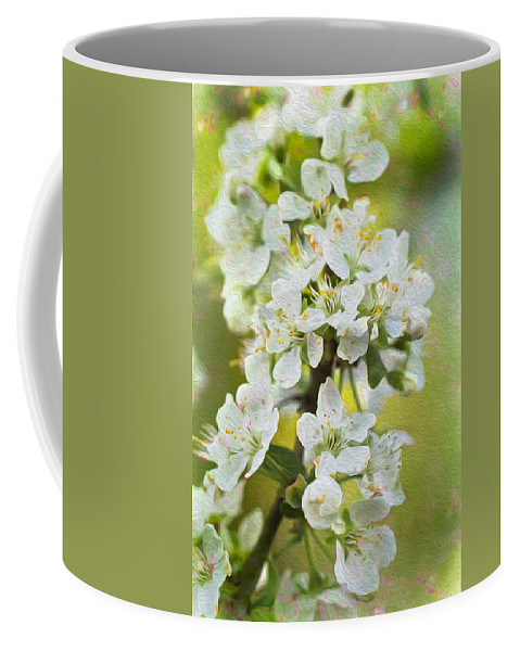 Clare Bambers Coffee Mug featuring the photograph Dreamy Blossom. by Clare Bambers