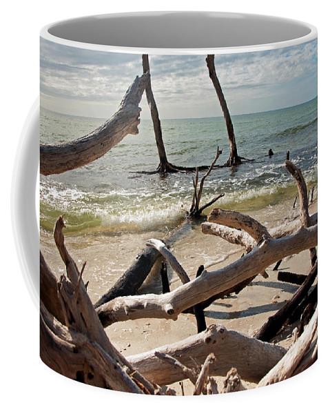 Driftwood Coffee Mug featuring the photograph Driftwood Jungle I by Christine Stonebridge