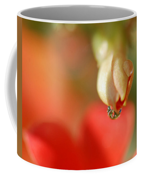 Waterdrop Coffee Mug featuring the photograph Dripping In Colors by Susan Capuano