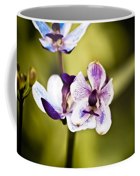 Flower Coffee Mug featuring the photograph Driving Me Crazy by Trish Tritz