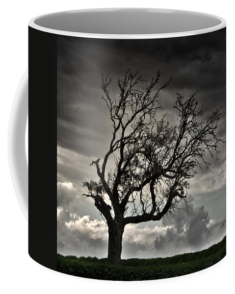 Autumn Coffee Mug featuring the photograph Dry Sunset by Stelios Kleanthous