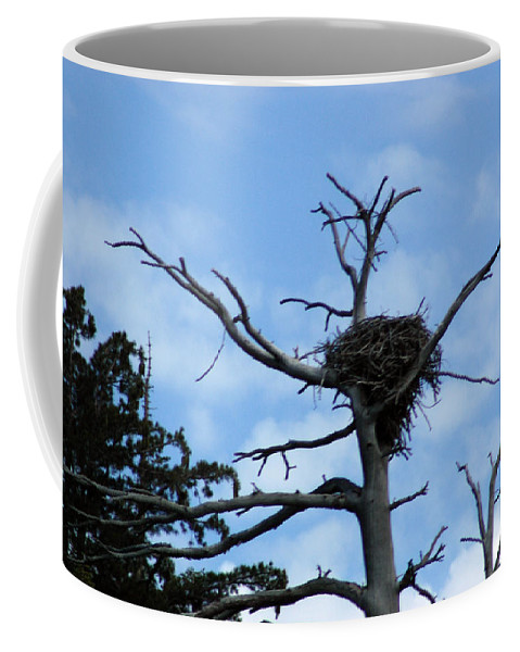 Usa Coffee Mug featuring the photograph Eagles Nest by LeeAnn McLaneGoetz McLaneGoetzStudioLLCcom