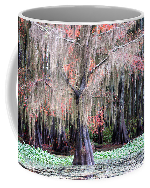 None Coffee Mug featuring the photograph East Texas by Ross Odom