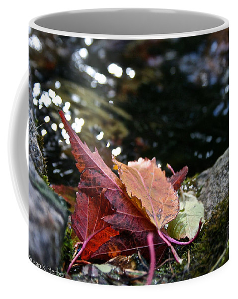 Outdoors Coffee Mug featuring the photograph Edge by Susan Herber