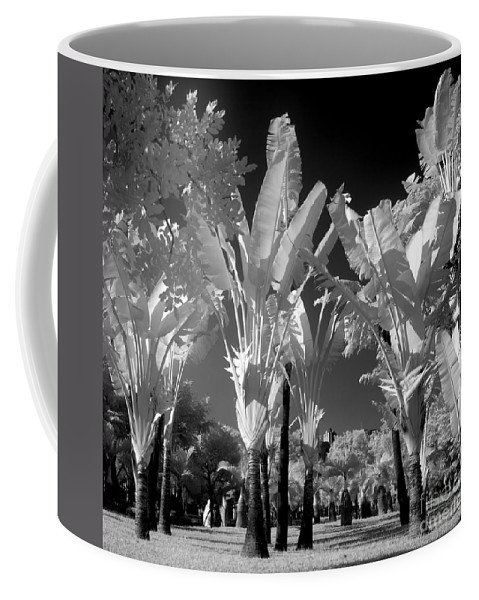 Infrared Coffee Mug featuring the photograph Eerie Palm Trees by Yali Shi
