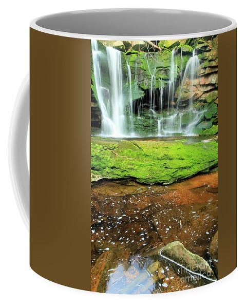 Elakala Falls Coffee Mug featuring the photograph Elakala Falls Portrait by Adam Jewell