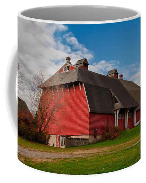 Barn Coffee Mug featuring the photograph Elusive by Guy Whiteley