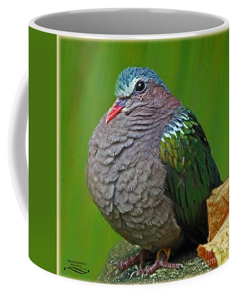 Male Coffee Mug featuring the photograph Emerald Ground Dove by Rebecca Morgan