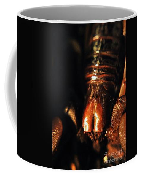 Yhun Suarez Coffee Mug featuring the photograph Emperor Scorpion 3.0 by Yhun Suarez