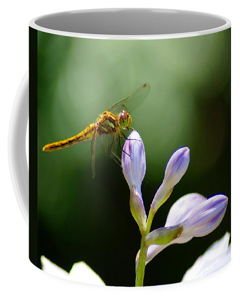 Dragonflies Coffee Mug featuring the photograph Enjoying The Moments Of The Day by Ben Upham III