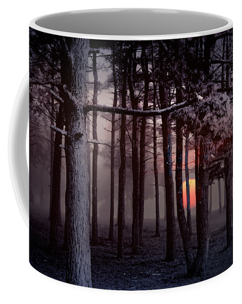 Art Coffee Mug featuring the photograph Ethereal Forest by Randall Nyhof