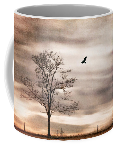 Alone Coffee Mug featuring the photograph Evening Flight by Darren Fisher