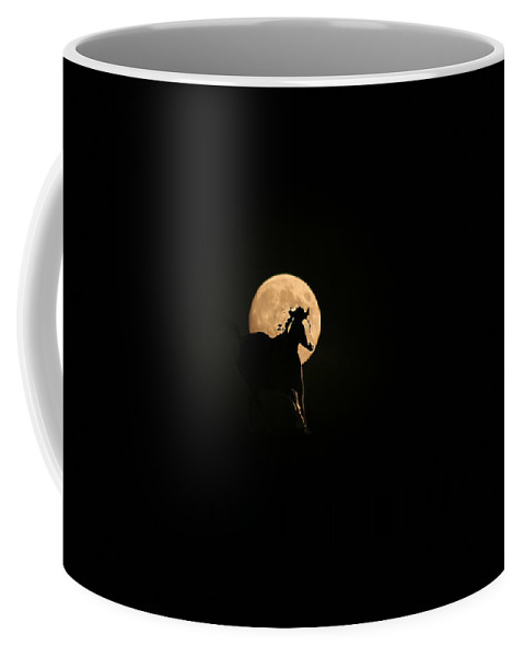 Horse Running Coffee Mug featuring the photograph Evening Run by Andrea Lawrence