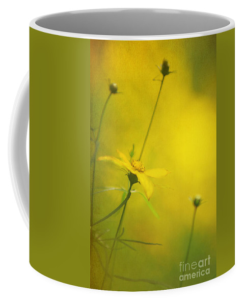 Background Coffee Mug featuring the photograph Faded Dreams by Darren Fisher