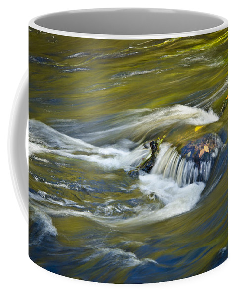 Florida Coffee Mug featuring the photograph Fall Colors In River Rapids by Carolyn Marshall