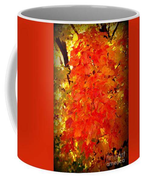 Fall Coffee Mug featuring the photograph Fall Foliage by Susanne Van Hulst