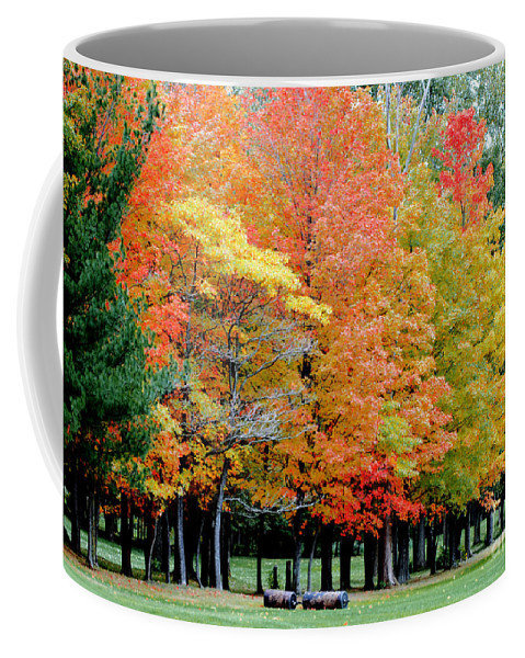 Autumn Colors Coffee Mug featuring the photograph Fall In Michigan by Optical Playground By MP Ray