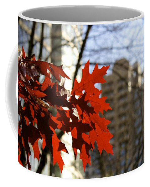 Leaves Coffee Mug featuring the photograph Fall In The City 2 by Alanna DPhoto