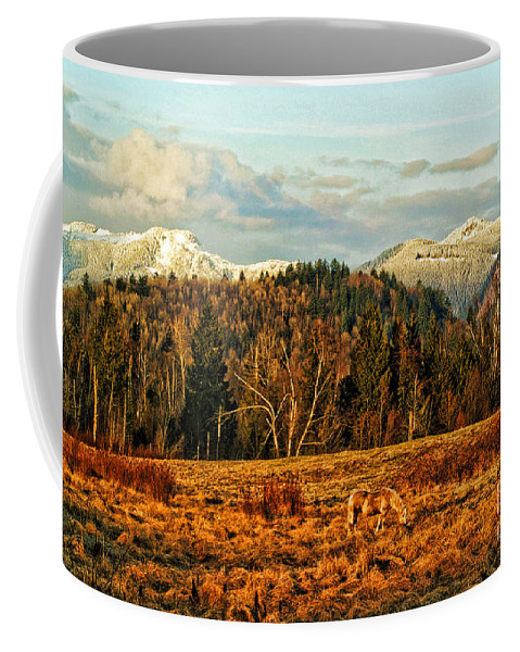 Barns Coffee Mug featuring the photograph Fall Landscape-hdr by Randy Harris