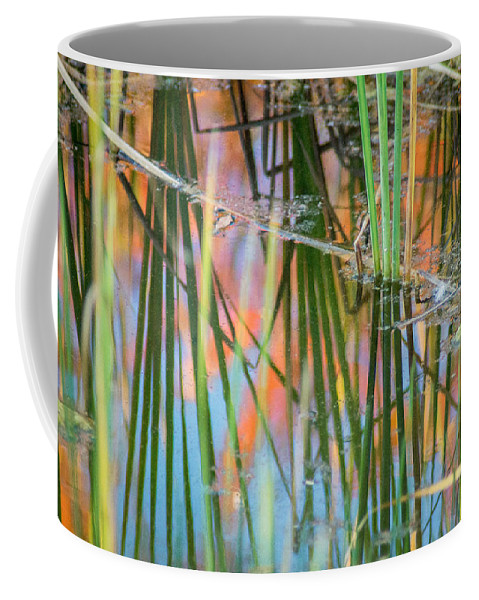 Fall Coffee Mug featuring the photograph Fall Reflections by Bill Pevlor